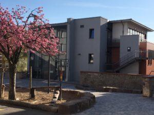 Gemeinsame Musterschule, Friedberg